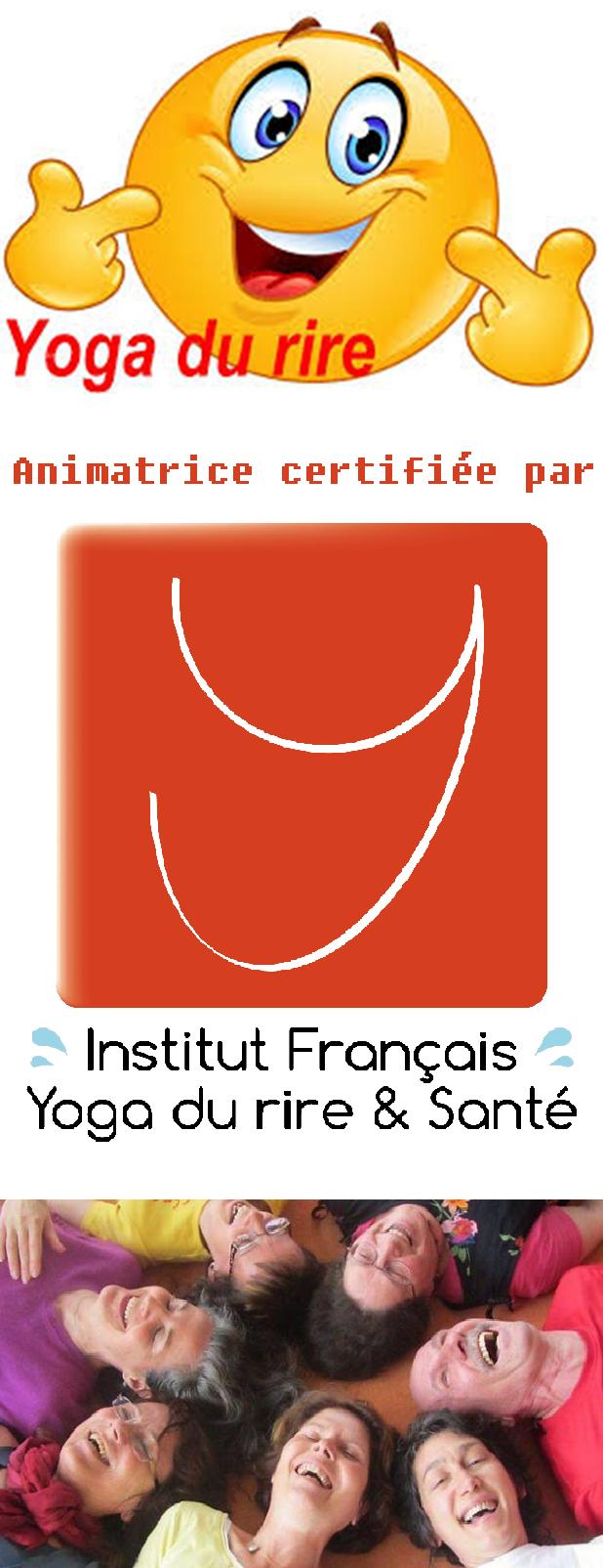 Logo animateur 2017 4